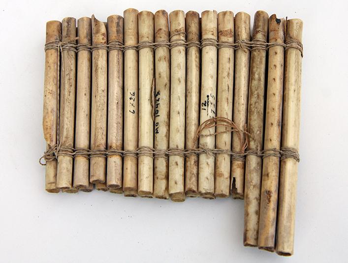 bone musical instrument