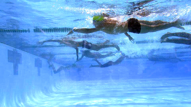 The Tunisian swimmers take part in a competition with their American peers.