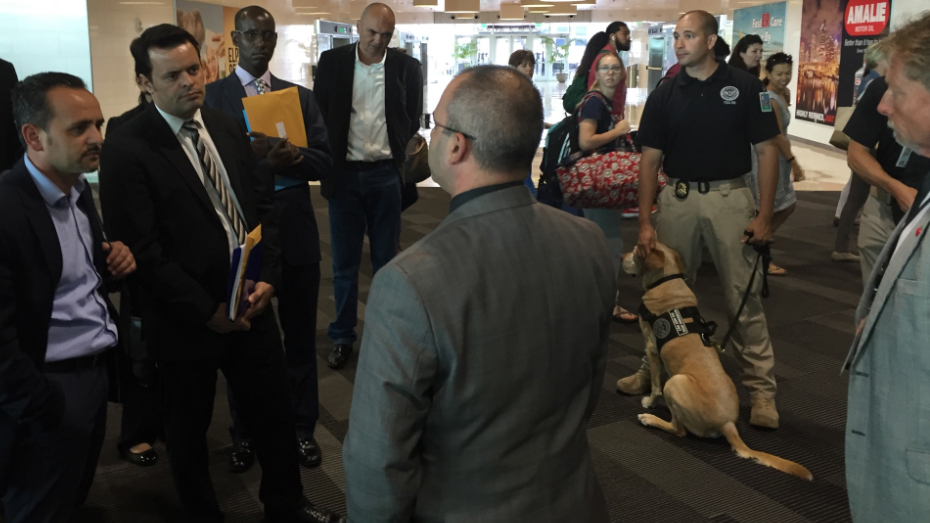 Photo of example group of security gentlemen.