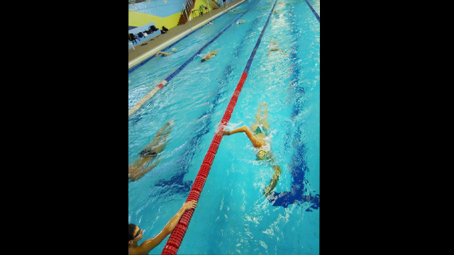 The swimmers warm up for an early morning practice with freestyle laps.
