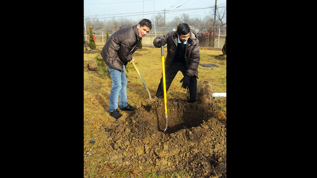 Youth Ambassadors plant trees as one of their community service activities.