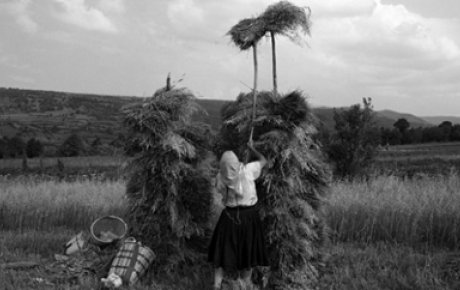 Woman throwing hay on top of a pile of hay