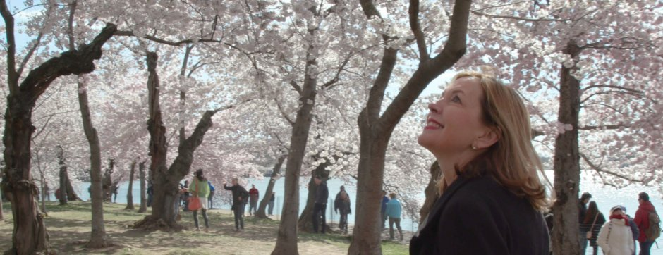 Assistant Secretary Marie Royce and cherry blossoms