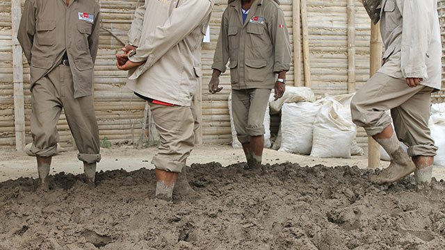 Workers are preparing mud bricks the traditional way for use  in the ruined walls of Caral in Peru.