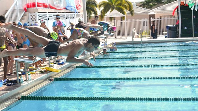 The swimmers dive into the water after the starting whistle.