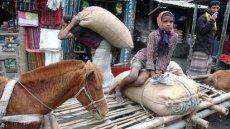 Photographer in Bangladesh