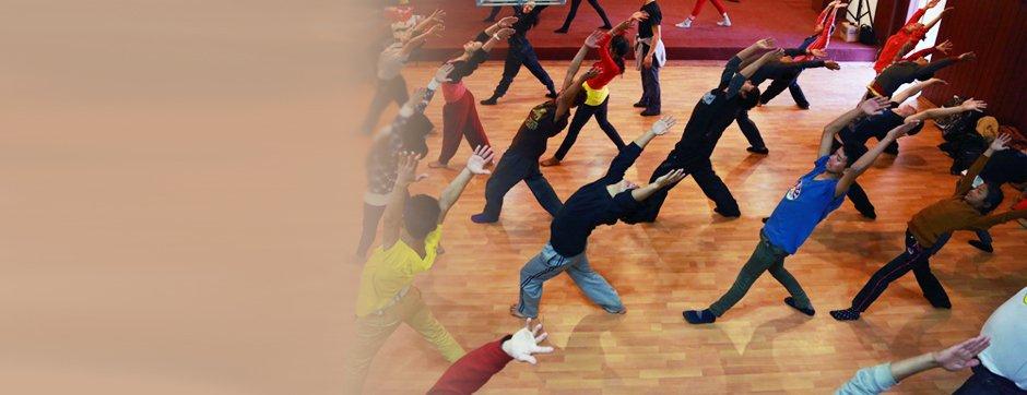 DanceMotion participants.