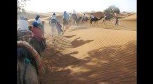 NSLI-Y scholars explore the Sahara Desert